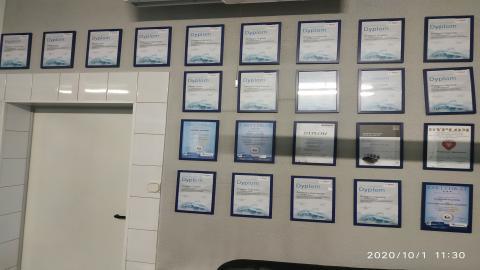 Galeria certificate #2