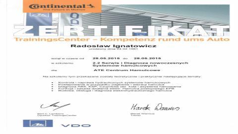 Galeria certificate #7