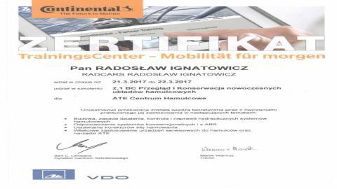Galeria certificate #8